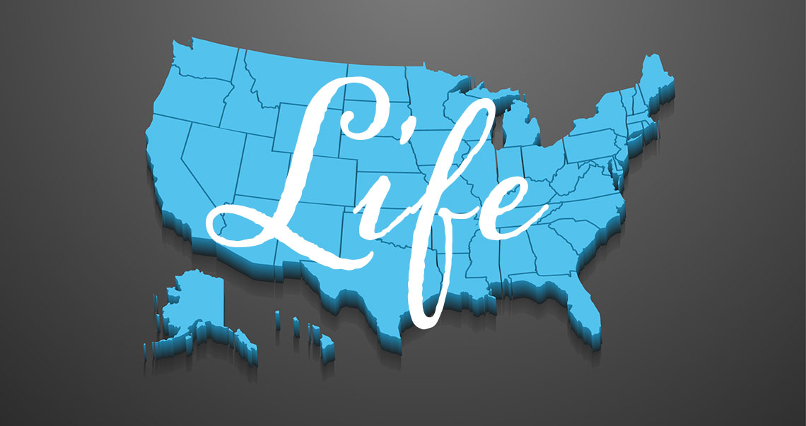 life map
