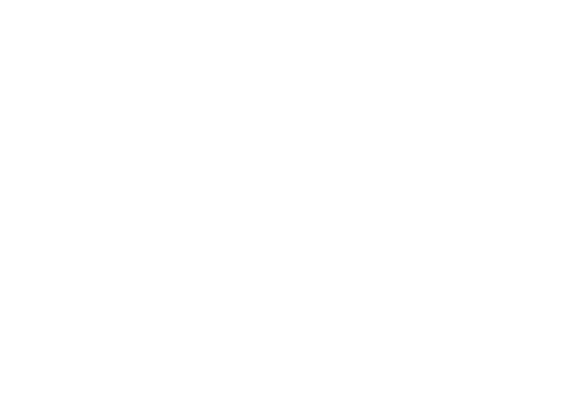 oregon-march-for-life-flag